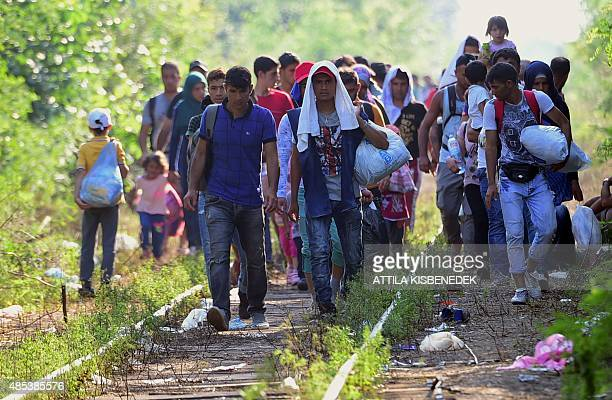 A migrant group walks between the railroad tracks near Roszke village of the HungarianSerbian border on August 27 2015 As Europe struggles with its...