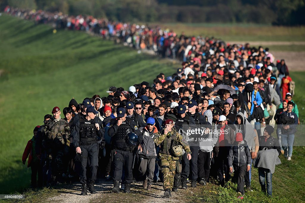 Migrants are escorted through fields by police and the army as they are walked from the village of Rigonce to Brezice refugee camp on October 24 2015...