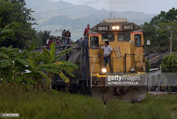 Migrants are seen on board of a train in Salto del Agua Chiapas state Mexico on June 19 2015 Hundreds of Central American migrants arrive in Mexico...
