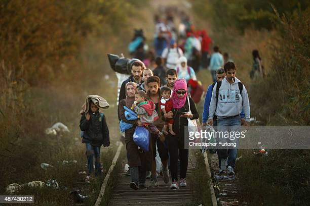 Migrants make their way through Serbia near the town of Subotica towards a break in the steel and razor fence erected on the border by the Hungarian...