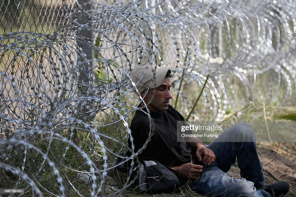 A migrants rests against the razor wire fence people wake up to a calm morning after yesterday's friction at the border crossing with Hungary on...