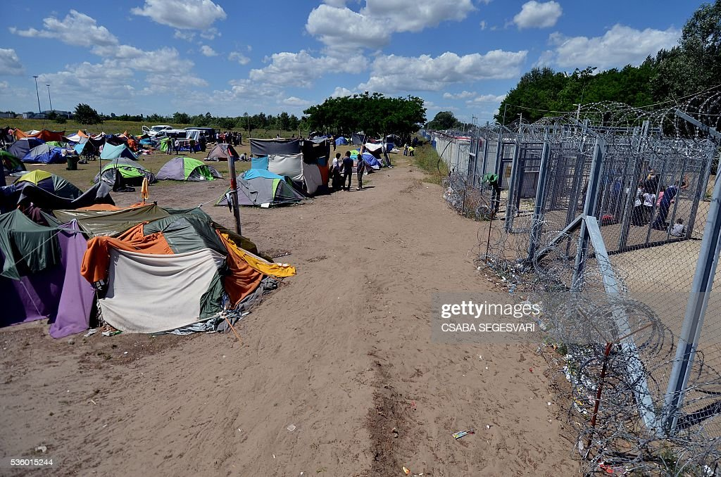 Migrants wait nearby the entrance of Hungarian transit zone near Roszke village on May 31, 2016 as Hungary bolsters anti-migrant fence on Serbia border following an increase in arrivals after the evacuation of Idomeni camp on the Greece-Macedonia frontier. Hungarian authorities said some people had managed to make their way up the migrant route, despite the border closure imposed in mid February by many Balkan states in a bid to halt the influx to northern Europe. / AFP / Csaba SEGESVARI