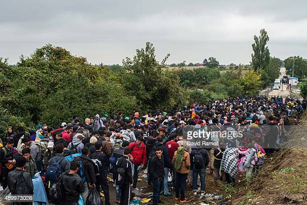 Migrants wait to cross into Croatia through the Serbian border on September 25 2015 in Bapska Croatia More than 40000 migrants have crossed into...