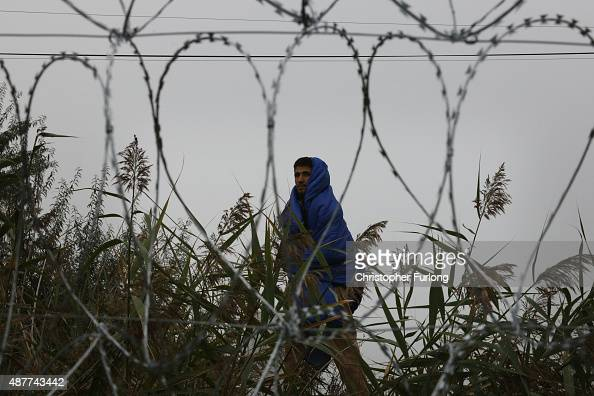 Migrants walk past the razor wire fence towards waiting buses at the Hungarian border with Serbia on September 11 2015 in Roszke Hungary Migrants are...
