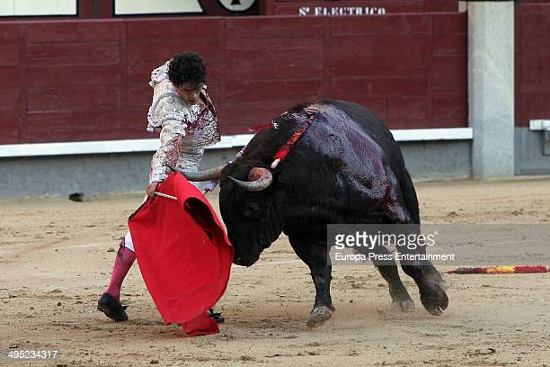 Miguel Abellan is gored by a bull during San Isidro Fair on May 30 2014 in Madrid Spain