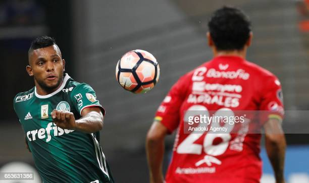 Miguel Borja of Brazil's Palmeiras in action next to Omar Morales of Bolivia's Jorge Wilstermann during their Libertadores Cup football match held at...