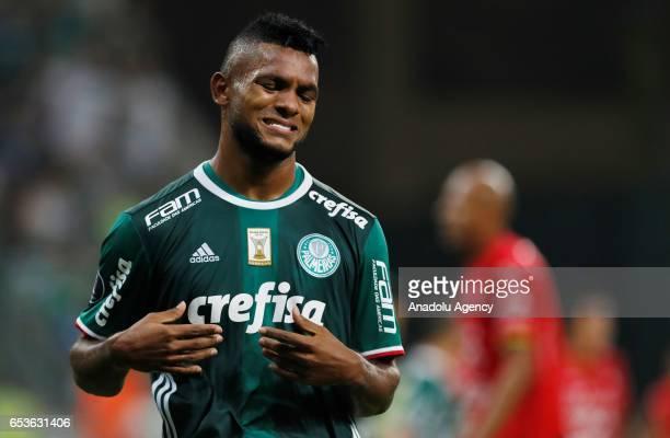 Miguel Borja of Brazil's Palmeiras reacts during a match between Palmeiras and Jorge Wilstermann as part of Libertadores Cup football match held at...
