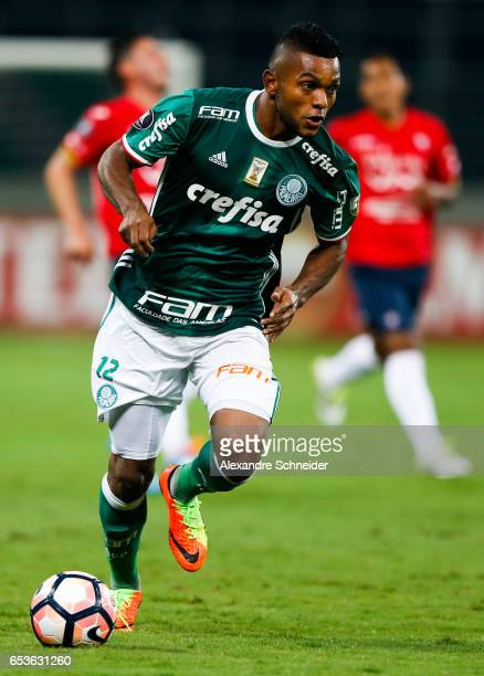 Miguel Borja of Palmeiras in action during the match between Palmeiras of Brazil and Jorge Wiltersmann of Bolivia for the Copa Bridgestone...