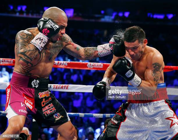 Miguel Cotto of Puerto Rico lands a left punch to the head of Sergio Martinez of Argentina during the third round of the WBC Middleweight...