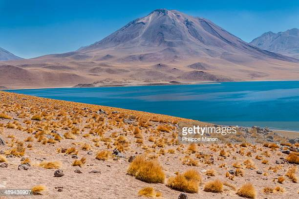 Miñiques Volcano and Laguna Miscanti, Chile