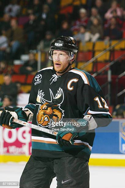 Mike Keane of the Manitoba Moose looks on against the Hamilton Bulldogs during the AHL game on January 7 2006 at Copps Colliseum in Hamilton Ontario...