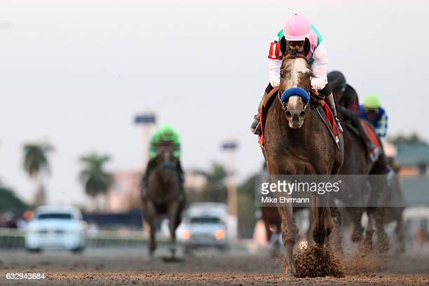 Mike Smith atop Arrogate crosses the finishline to win the $12 Million Pegasus World Cup Invitational at Gulfstream Park on January 28 2017 in...