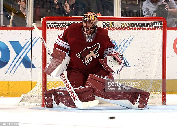 Mike Smith of the Arizona Coyotes gets ready to make a save against the Vancouver Canucks at Gila River Arena on March 22 2015 in Glendale Arizona