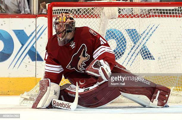 Mike Smith of the Arizona Coyotes gets ready to make a save against the Anaheim Ducks at Gila River Arena on April 11 2015 in Glendale Arizona