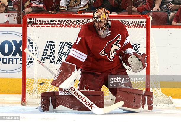 Mike Smith of the Arizona Coyotes makes a blocker save against the Anaheim Ducks at Gila River Arena on April 11 2015 in Glendale Arizona