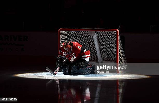 Mike Smith of the Arizona Coyotes prepares for a game against the Calgary Flames at Gila River Arena on December 8 2016 in Glendale Arizona