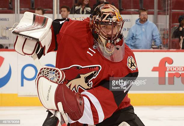 Mike Smith of the Arizona Coyotes skates with the puck during pregame against the Edmonton Oilers at Gila River Arena on November 12 2015 in Glendale...