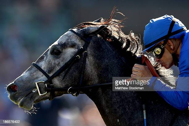 Mike Smith surges to the finish line atop Outstrip in the Juvenile Turf during the 2013 Breeders' Cup World Championships at Santa Anita Park on...
