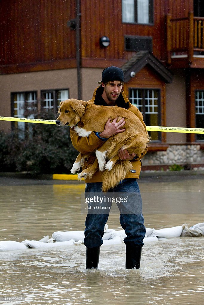 Mike Sommers carries his dog Kratos through the floodwater outside his apartment June 21 2013 in Canmore Alberta Canada Widespread flooding caused by...