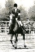 Mikio Chiba of Japan riding Mauta competes in the Individual Threeday event during the Tokyo Summer Olympic Games on October 16 1964 in Karuizawa...