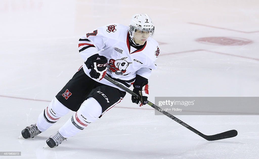 Mikkel Aagaard of the Niagara Ice Dogs skates during an OHL game between the Sudbury Wolves and the Niagara Ice Dogs at the Meridian Centre on...