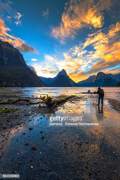 Milford sound in the sunset with traveler