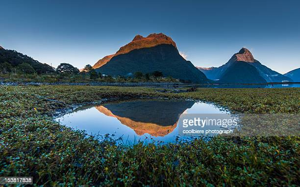 Milford sound with reflection in tidal pool