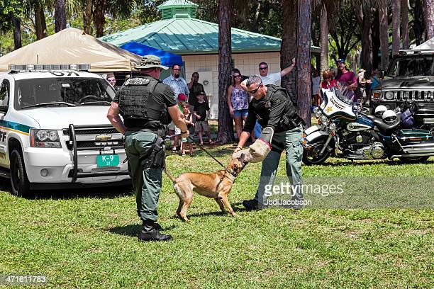 Military K9 Working Dog Demonstration