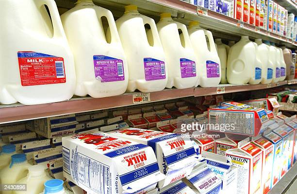 Milk sits in a refrigerated section of a grocery store August 26 2003 in New York City The price of milk is expected to jump nearly $1 a gallon as...