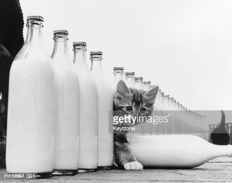 Milky Paradise : Stock Photo
