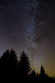 Relatively clear view of the galaxy with coniferous forest silhouette in foreground, in Wales, UK