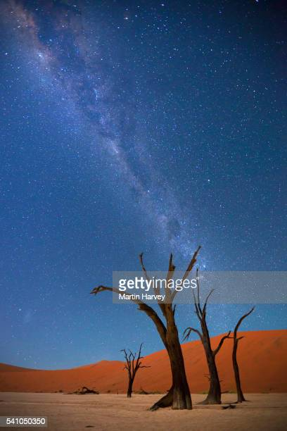 Milky Way over Dead Vlei,Soussvlei,Namibia
