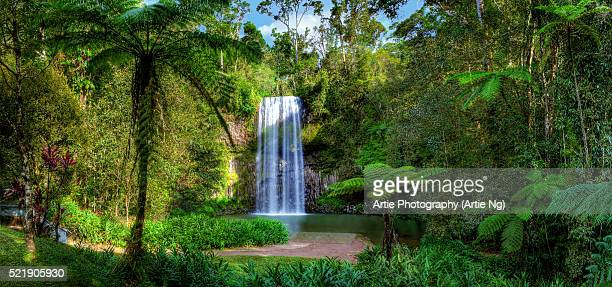 Millaa Millaa Falls, Atherton Tableland, Far North Queensland, Australia