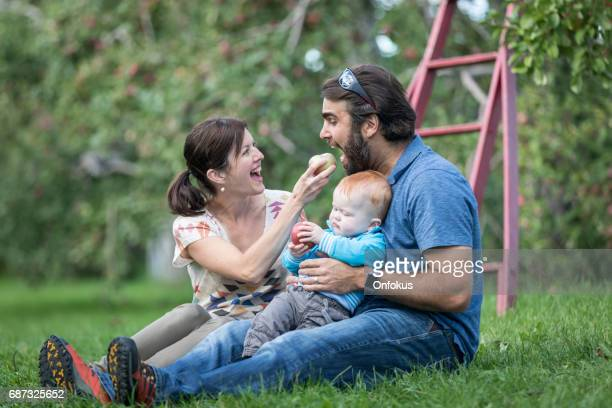 Millennial Parents Picking Apples in Orchards