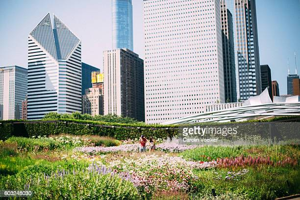 Millennium Park of Chicago with view of the skyline