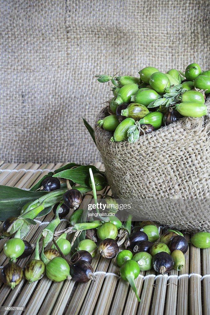 Millet : Stock Photo