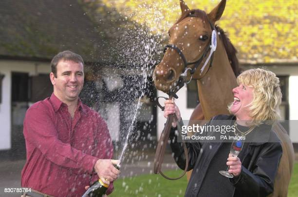 1 Million Lottery winner Kathy Young a groom at Nicky Henderson's racing stables near Lambourn Berkshire celebrates her Christmas Eve win with her...