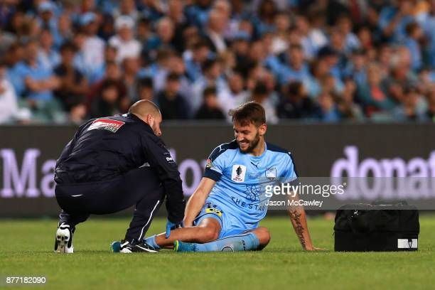 Milos Ninkovic of Sydney receives attention for an injury during the FFA Cup Final match between Sydney FC and Adelaide United at Allianz Stadium on...