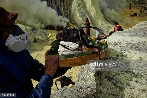 A miner carries a goats head for burial in the crater as part of an annual offering ceremony on the Ijen volcano on December 17 2013 in Banyuwangi...