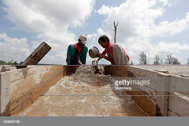 Miners sluice for tin ore at a mine in Sungai Liat Bangka Island Indonesia on Saturday July 28 2012 In recent years about onethird of all the tin...
