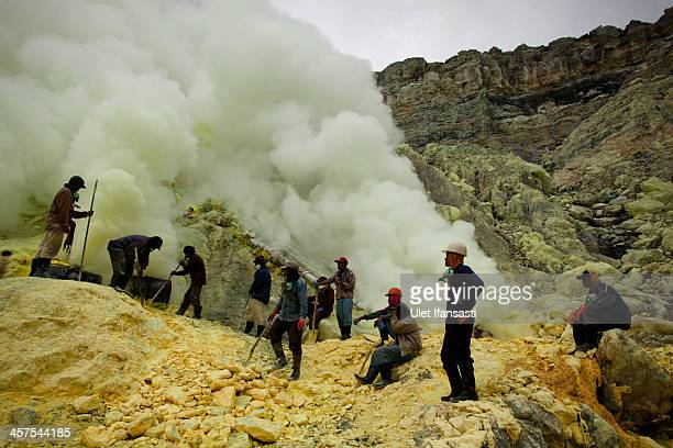 Miners uses poles to extract sulphur from pipes at the flow crater during an annual offering ceremony on the Ijen volcano on December 17 2013 in...