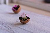 Beautiful Eastern decoration/ Little pink flowers in eggshell