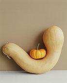 Mini pumpkin sitting on a gourd.