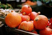 Mini pumpkins displayed at a market stall