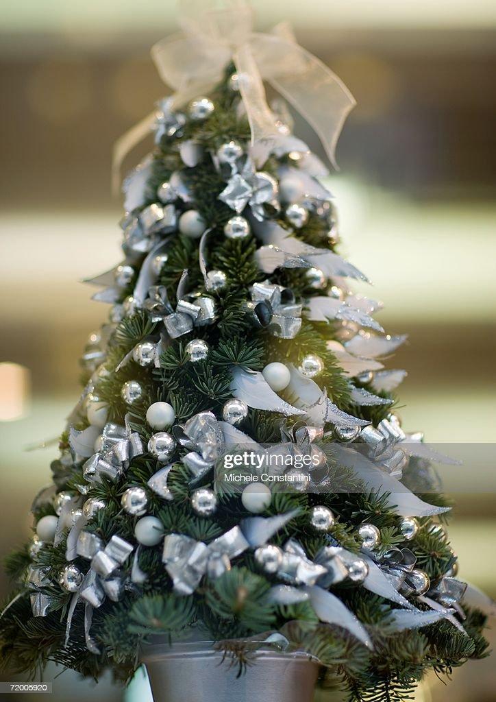 Miniature christmas tree : Stock Photo