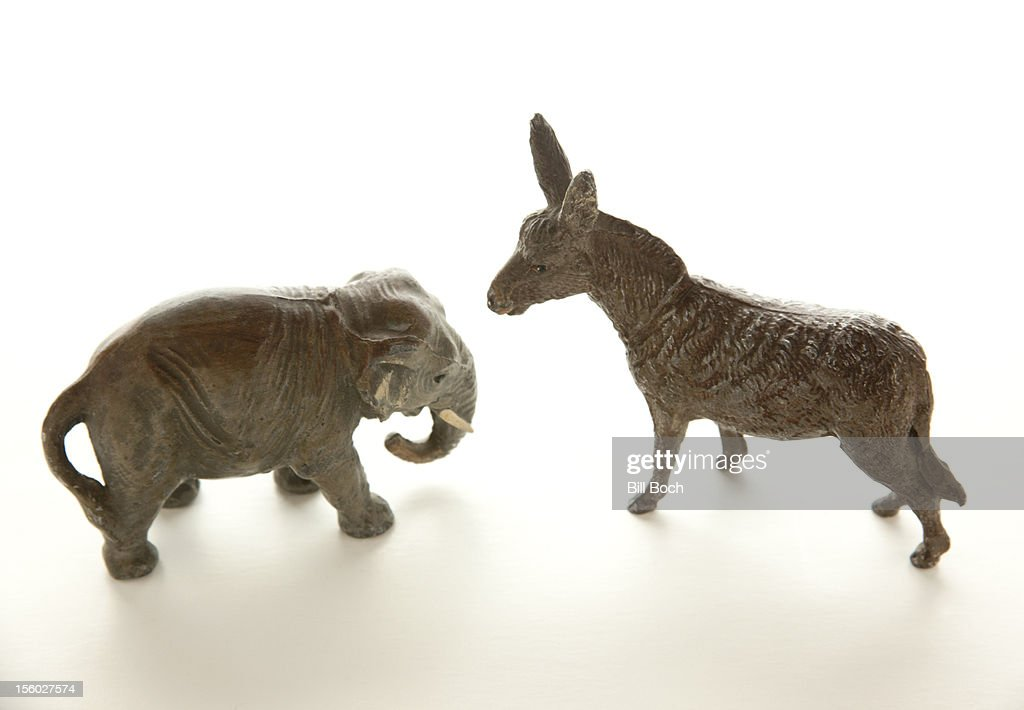 Miniature donkey confronts elephant