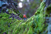 Miniature human figure walking down tree trunk