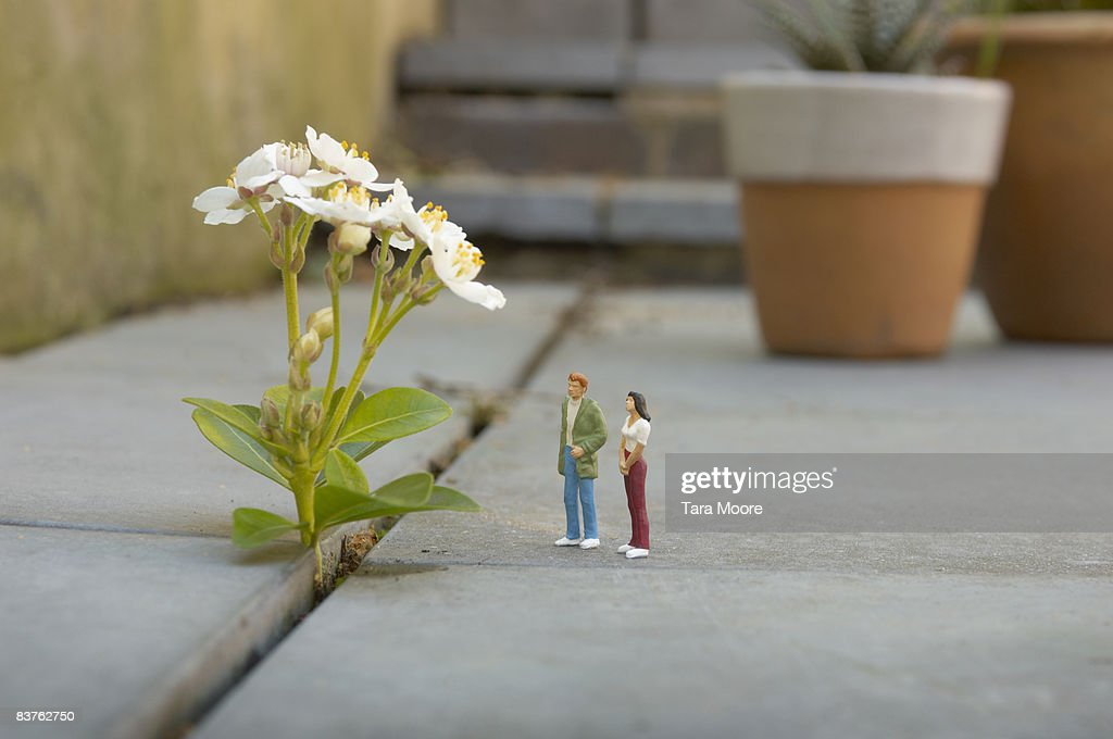 miniature man and woman looking at flower