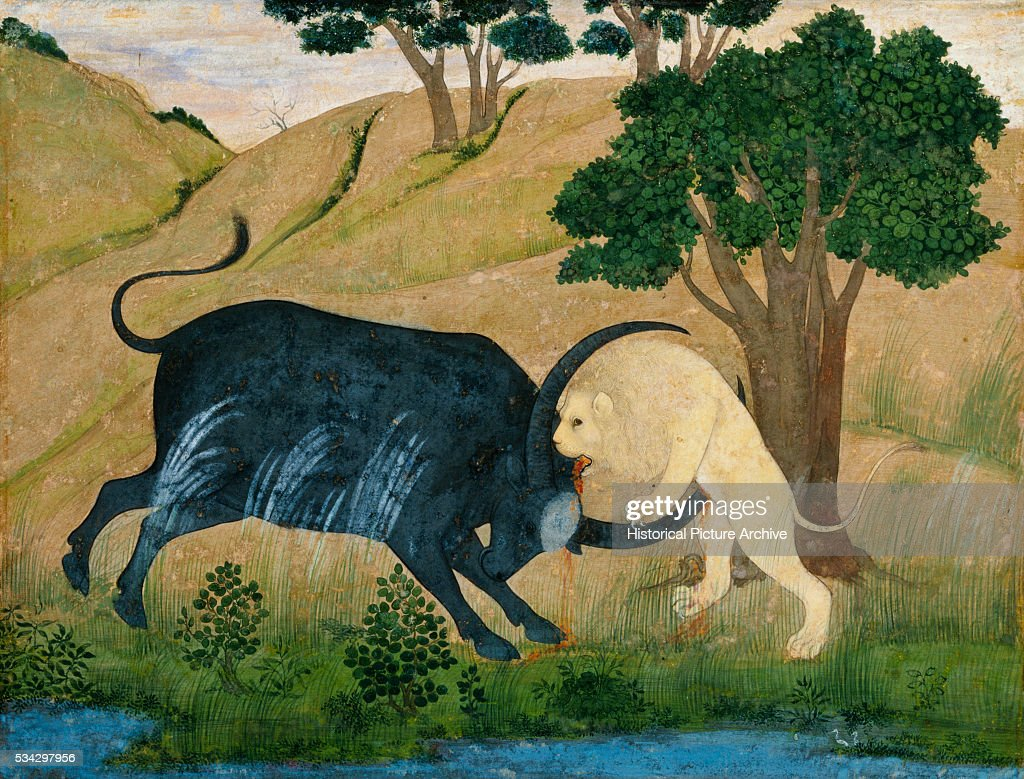 Miniature Painting of Lion in Combat with Water Buffalo Pictures ...