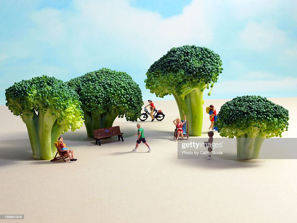 Miniature park with broccoli trees : Stock Photo